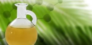 De plus en plus d'entreprises de l'huile de palme s'engagent pour le meilleur de la filière