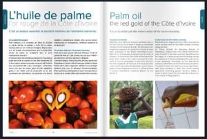 Pages intérieurs MAgazine Air Ivoire