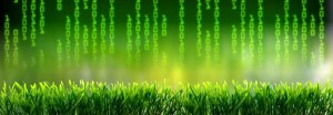 Visuel du logiciel vert