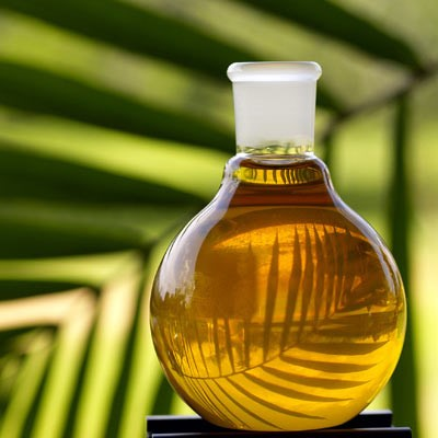 L'huile de palme, très riche en nutriments pour le corps.