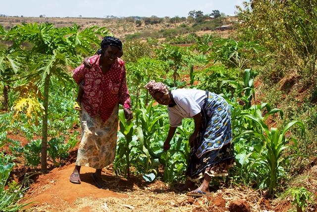 En Afrique, comme partout dans le monde, les paysans ont fait le point de leurs luttes, ce 17 avril. Photo: wikimedia.org