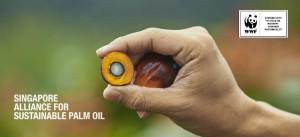 Singapour_Alliance_Sustainable_Palm_Oil