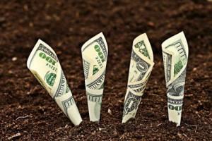 Investissement_agricole