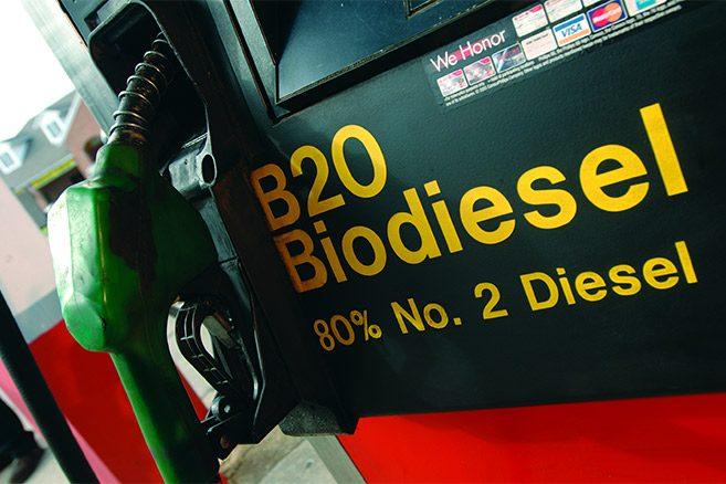 biodiesel-huile-de-palme-palmafrique