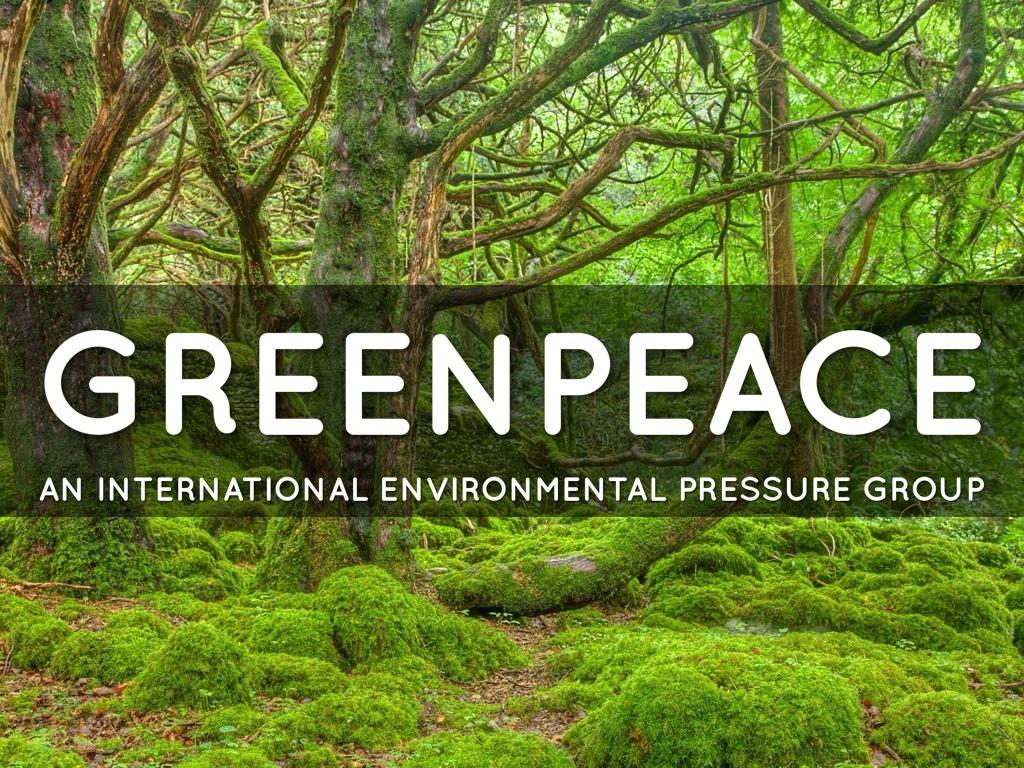 Greenpeace_Palmafrique